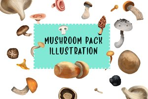 Mushroom Illustration Pack