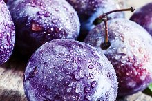 Large purple plum with water drops,  by  in Food & Drink