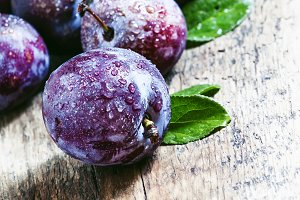 Large purple plum with water drops,
