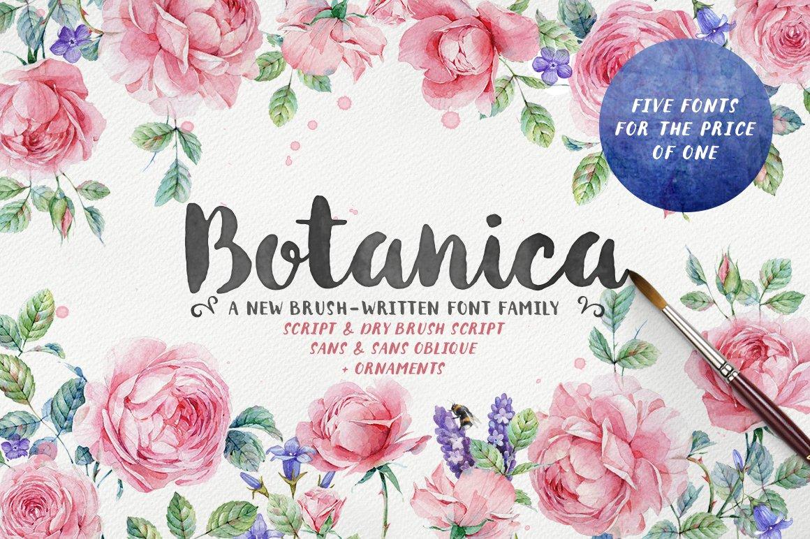 Botanica Brush Family 20 Off Script Fonts Creative