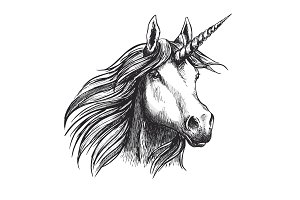 Unicorn horse vector sketch