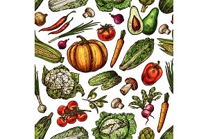 Vegetables natural sketch pattern