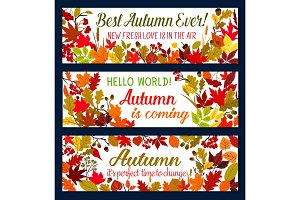 Autumn season banner with leaves