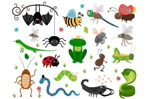 Cute vector insects & reptiles