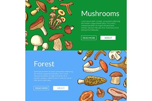 Vector hand drawn mushrooms