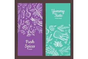 Vector hand drawn herbs spices