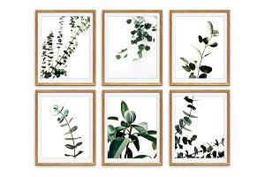 Botanical Wall Art, Eucalyptus Print