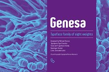 Genesa - Intro Sale (ends 05.08.18) by  in Sans Serif Fonts