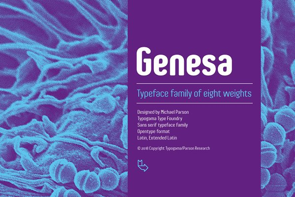 Sans Serif Fonts: Typogama - Genesa - Intro Sale (ends 05.08.18)