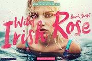 Wild Irish Rose brush script font