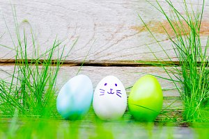 Easter eggs in grass against blurred