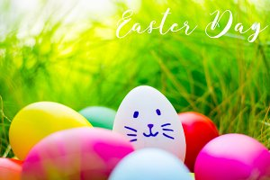 Easter eggs cute bunny. Funny happy