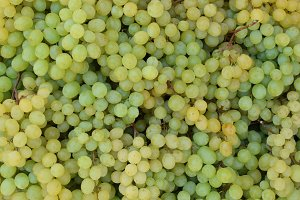 Sultanina Grapes Background