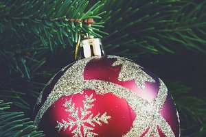 Red Gold Christmas ball and green sp