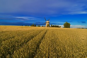Harvesting background. Old windmill