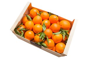 Tasty valencian oranges on wood box