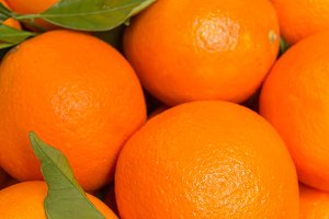 Closeup of tasty valencian oranges