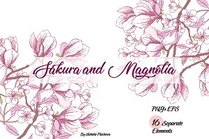 Sakura and Magnolia clip art