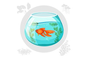 Gold fish floating in aquarium bowl