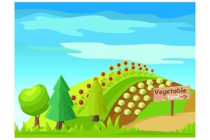Vegetable Farm Vector with Harvest