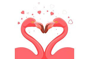 Pink flamingo kissing love of birds