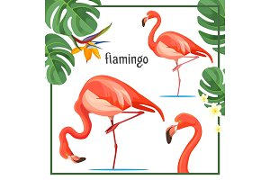 Flamingo poster with leaves and