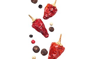 Various type of pepper isolated on