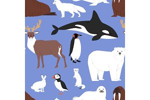 Arctic animals cartoon vector polar