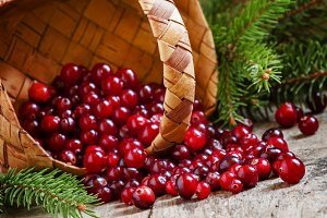 Fresh cranberries in a wicker basket