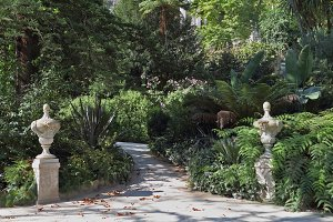 Artistic statues adorn the shady lan
