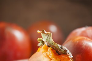 Sliced persimmon on a plate, selecti