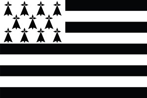Vector of Brittany flag.