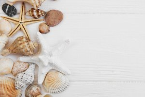 sea shells on a white wooden table