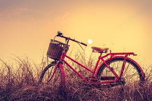 Vintage Bicycle with summer backgrou