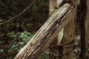 Close up of old wooden fence in fore
