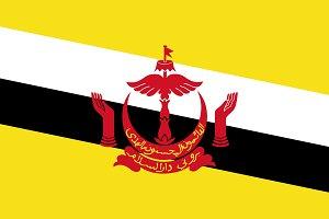 Vector of Brunei flag.