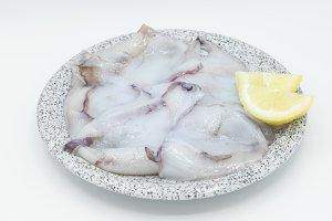 Cuttlefish Isolated fresh