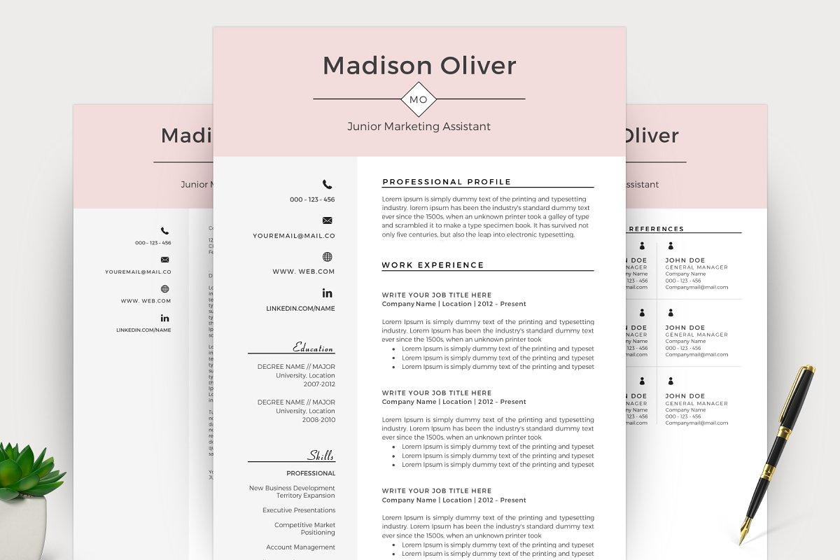 Professional Resume/CV Template Word