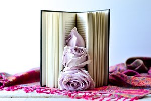 Blush roses on book 4