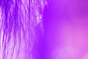 Ultra violet abstract background