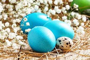 Blue Painted Easter eggs and quail e