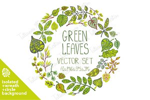 Green leaves,branches vector set 03