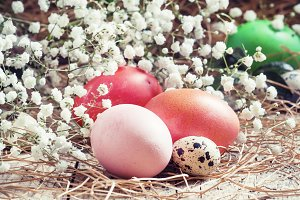 Red and pink Easter eggs and quail s
