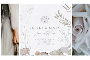Watercolor Flowers & Illustrations