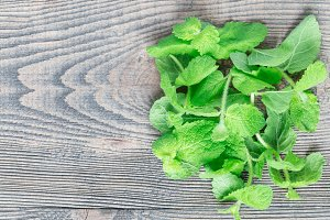 Fresh mint leaves on wooden table, h