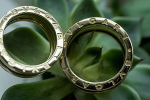 Golden wedding rings lie on a green