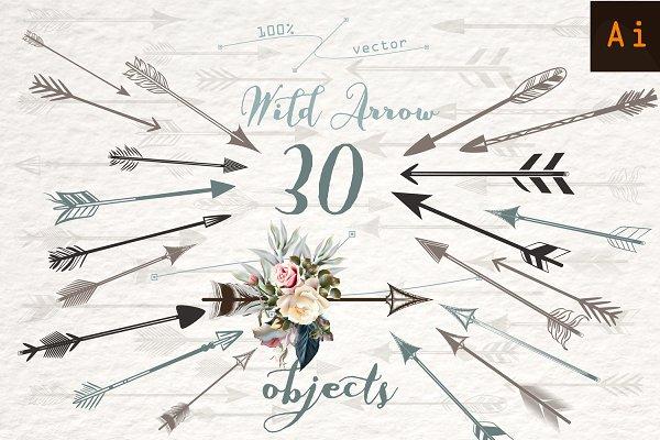 Wild arrow vector clipart set