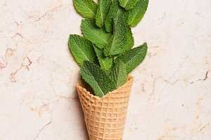 Mint leaves in ice cream cones on st