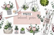 Protea - botanical garden collection by  in Illustrations