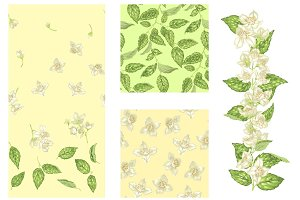Jasmine Seamless Patterns and Branch